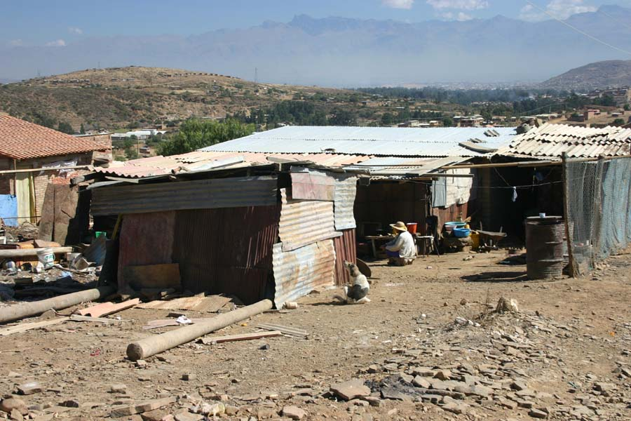 Living conditions in 2004
